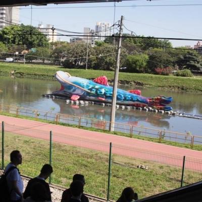 Abertura da sétima edição da Virada Sustentável em São Paulo com programação intensa