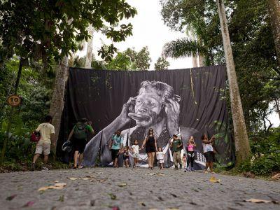 Virada Sustentável Rio 2019