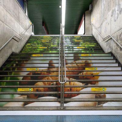 #MinhaMensagem | Metrô SP Estação Santa Cecília