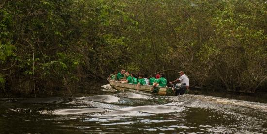 Caminhada Ecológica até a APA - Baleia