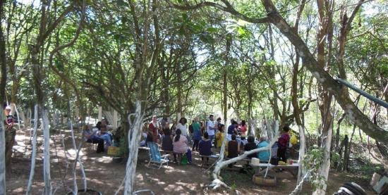 Seminário na Horta de PANCs do Rincão dos Maçaricos