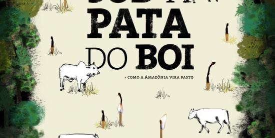 Sob a Pata do Boi   Como a Amazônia vira pasto