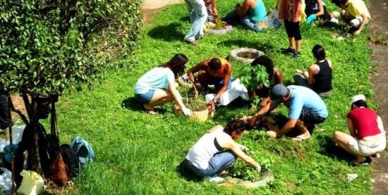 Roda de Conversa + Plantio de arbórea
