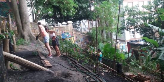 Projeto Horta da Formiga Sabores e Saberes
