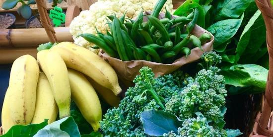 Você sabe ser saudável? E sustentável?