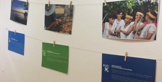 Objetivos de Desenvolvimento Sustentável (ODS) na Amazônia