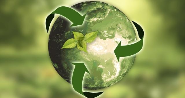 Mostra de Vídeos sobre Sustentabilidade