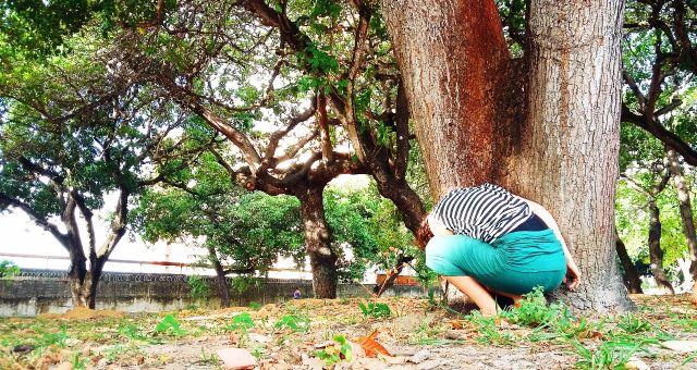 Oficina em Performance | Escuta das árvores