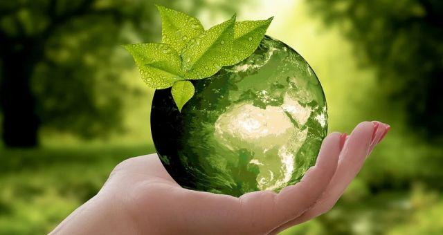 Encontro Virada Sustentável | Painel Sustentabilidade Legal
